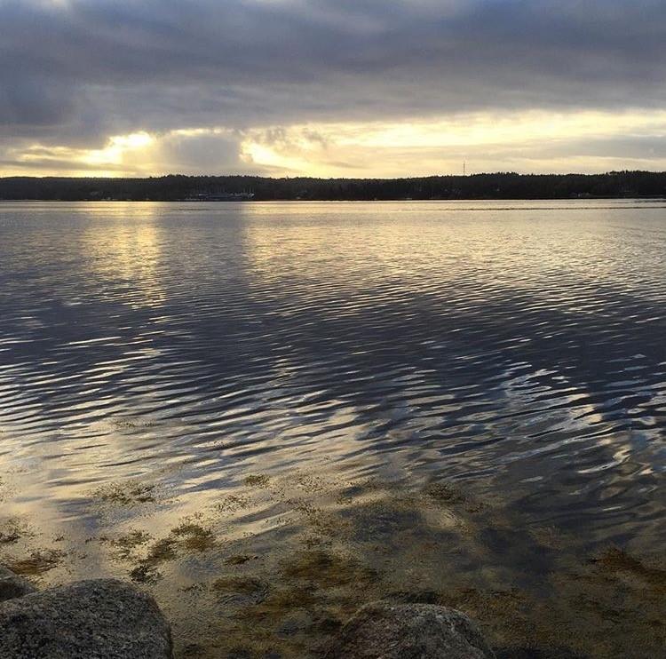 Dawnswater